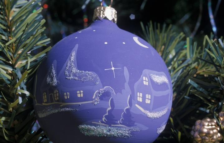 Зовсім скоро новорічні красуні порадують хмельничан.