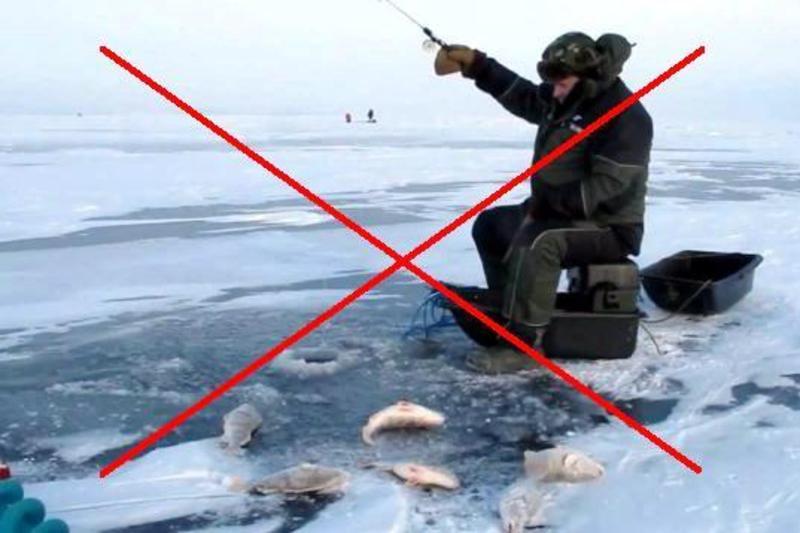 Риболовлю заборонили з 1 листопада 2016 р. до початку весняного нестерового періоду 2017 р