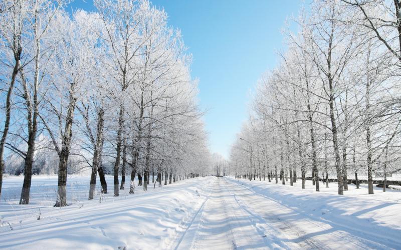 Як інтерпретують зимову красу художники - можна побачити у Хмельницькому художньому музеї.