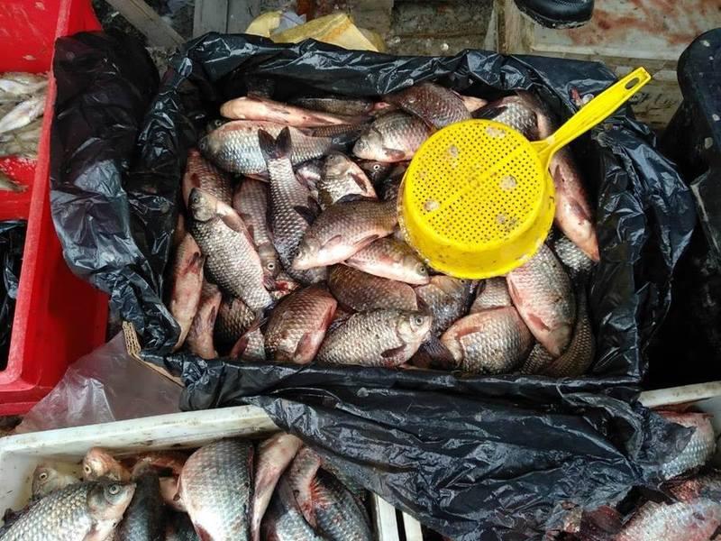 На ринку обласного центру інспектори виявили чоловіка, який намагався реалізувати рибу без жодних дозвільних документів