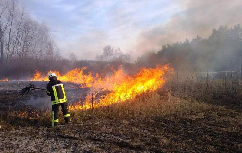 На Рівненщині третій день горять торф'яники та суха трава