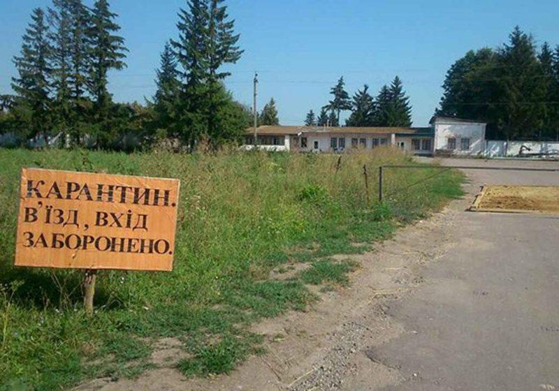 На Теофіпольщині встановлені карантинні пости
