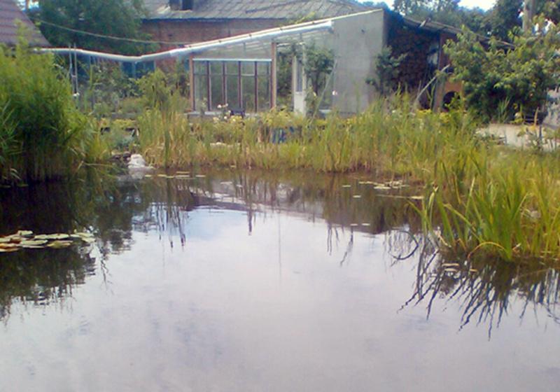 Застілля біля ставку в Славуті завершилося двома смертями