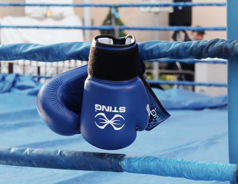 У новій програмі розвитку боксу найбільшою проблемою вказано застарілі матеріально-технічну базу, спортивне обладнання та інвентар
