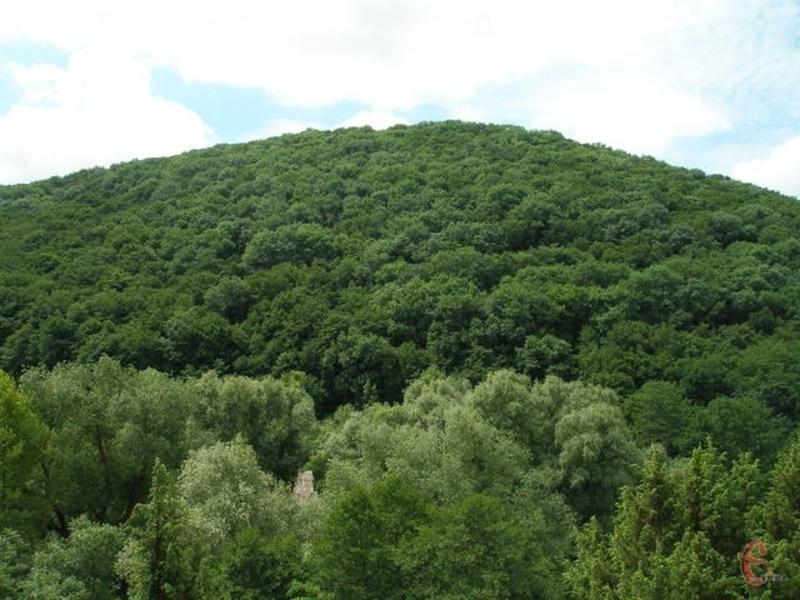 Площа городища на Кармалюковій горі близько 5-ти гектарів. Воно існувало в часи Київської Русі та зникло в ХІІІ столітті