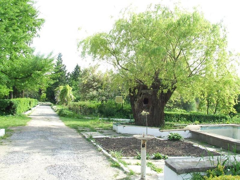 З 1 жовтня 1930 року веде своє літочислення Кам\'янець-Подільський ботанічний сад