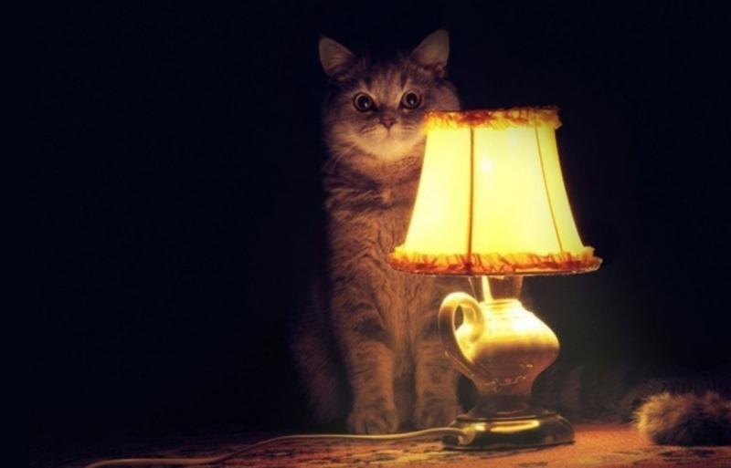 Світло відключать у мікрорайоні Лезнево