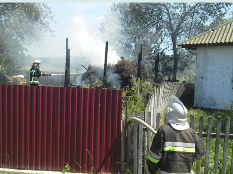 Нещасних випадків на пожежі не було