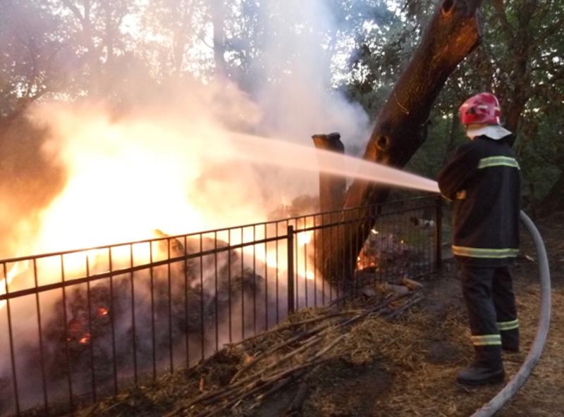 Існувала загроза перекидання вогню на житловий будинок та хлів, розташовані поряд