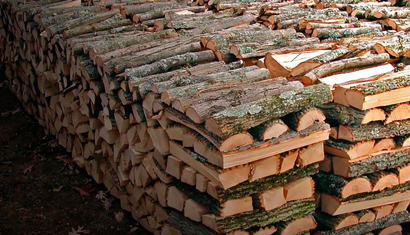 Хмельничанин на одному з інтернет сайтів хотів купити дрова і залишився без грошей