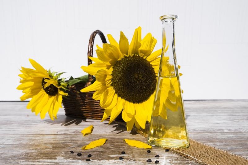 Впродовж 2020 року наша країна експортувала за кордон 6,9 мільйона тонн соняшникової олії, що становило 37 відсотків від світового ринку