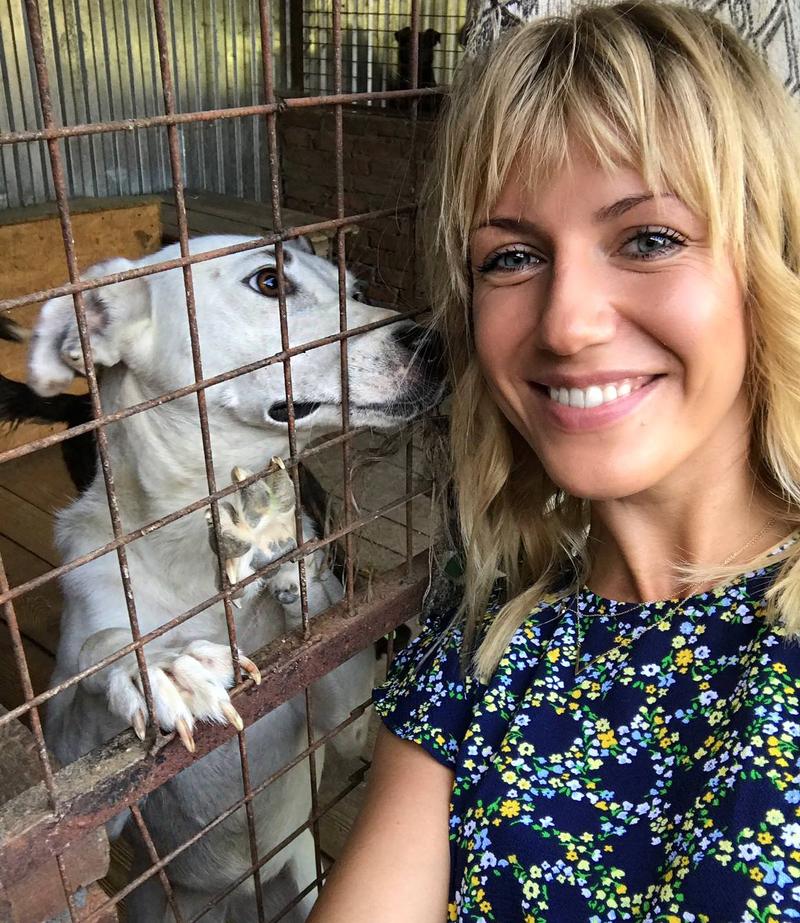 Телеведуча продала сукні, щоб допомогти собакам