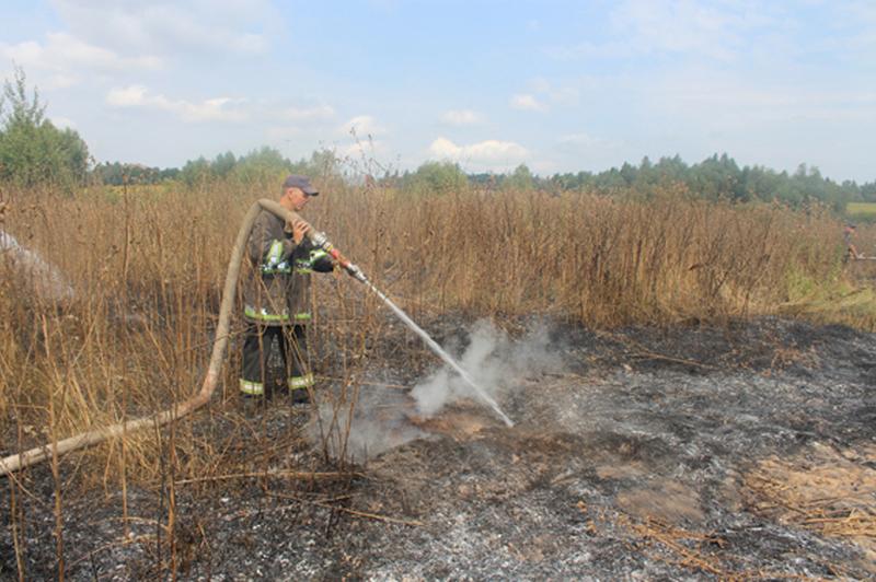 Процес гасіння ускладнювало значне розосередження осередків пожежі.