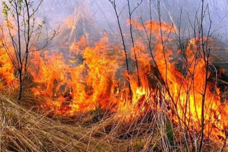 Через необережне поводження з вогнем знищило 1,2 гектара сухостою