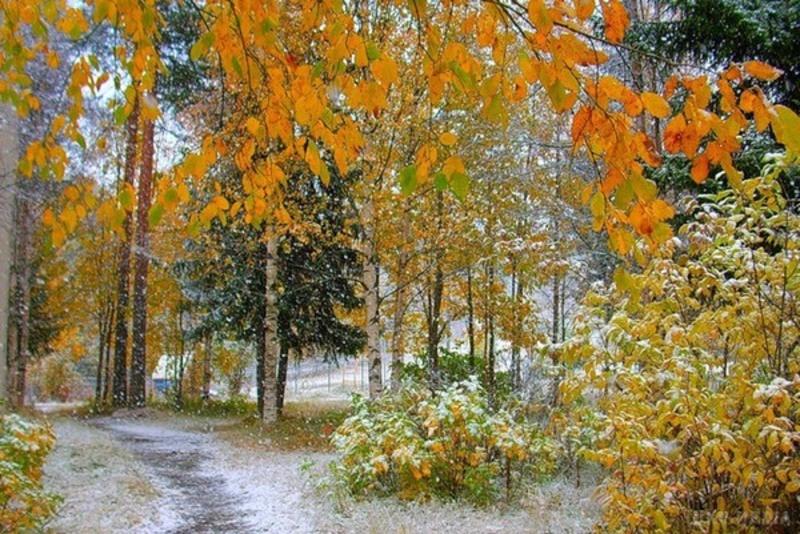На Хмельниччині прогнозують мокрий сніг