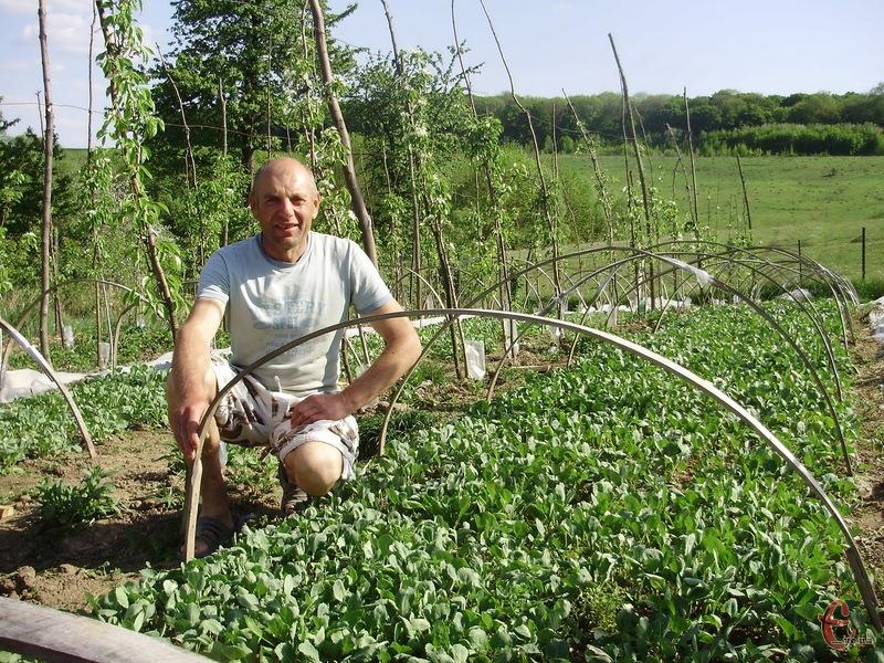 Сергій Кушнір займається вирощуванням розсади понад 20 років