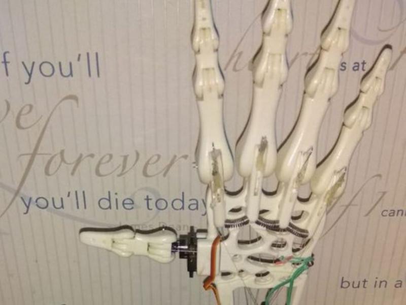 Ця електронна рука може використовуватися для робіт з розмінування