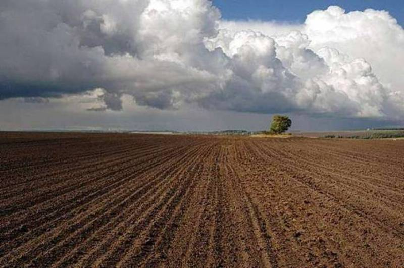Фермер заплатив 30 тисяч гривень, за те що незаконно засіяв 18 гектарів