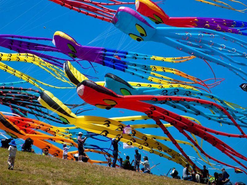 Під Миколаєвом вперше відбудеться фестиваль повітряних зміїв