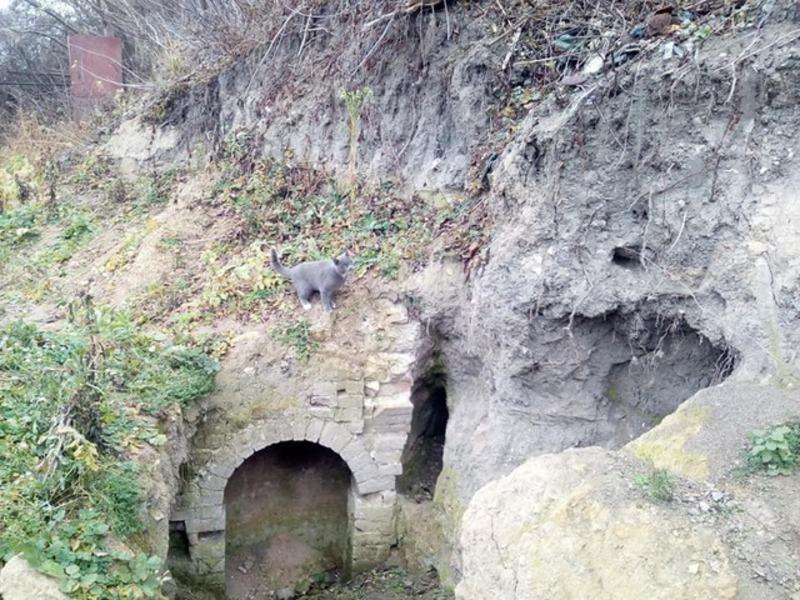 Вже цього року в Городку планують провести археологічні дослідження історичної частини міста