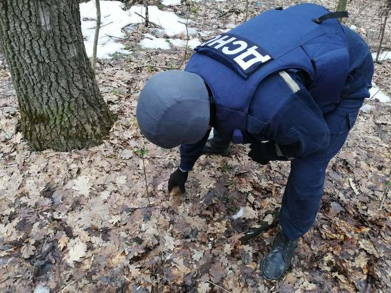 Гранату, яку знайшли на Кам'янеччині 17 лютого, вчора знешкодили