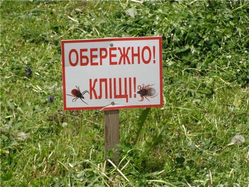 Кліщі можуть нападати на людину у будь-який час дня і ночі, в будь-яку погоду