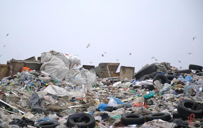Нові тарифи на вивіз сміття в Хмельницькому діятимуть з 20 квітня