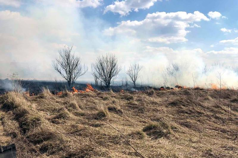 У ДСНС зазначають, що випалювання сухої рослинності навесні та восени стає справжнім лихом та завдає величезної шкоди екосистемам