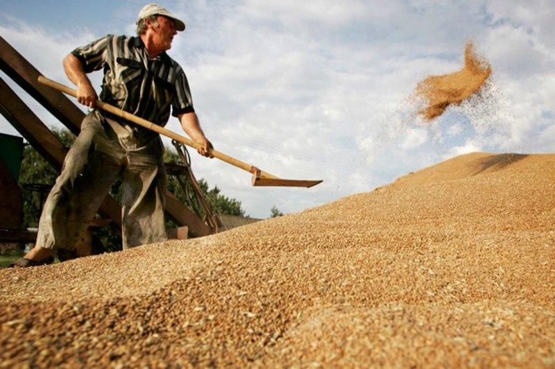 Цього року подільські аграрії поставляли власну продукцію до майже 30 країн світу