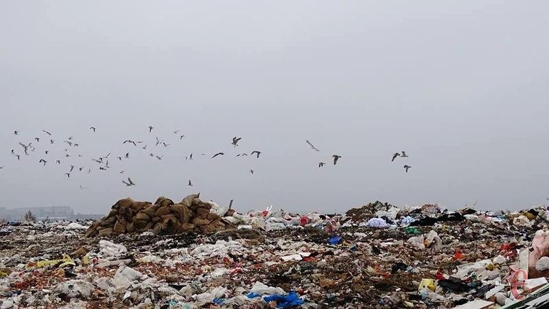 За грантові кошти міська влада планує вирівняти схили сміттєзвалища й провести його рекультивацію