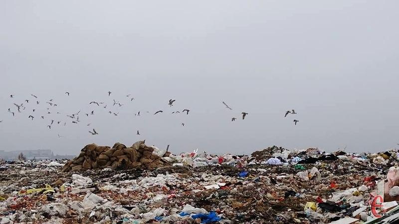 Кошти планують використати на реконструкцію чинного сміттєзвалища та будівництво сміттєпереробного підприємства