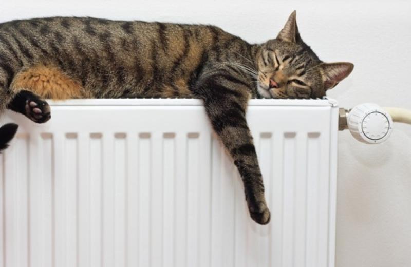 Опалюальний сезон розпочнеться у разі позхолодання