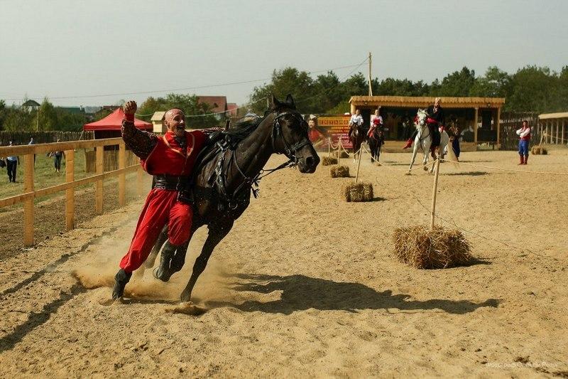 Кінний фестиваль трюкового мистецтва пройде у Січі в селі Ісаківці