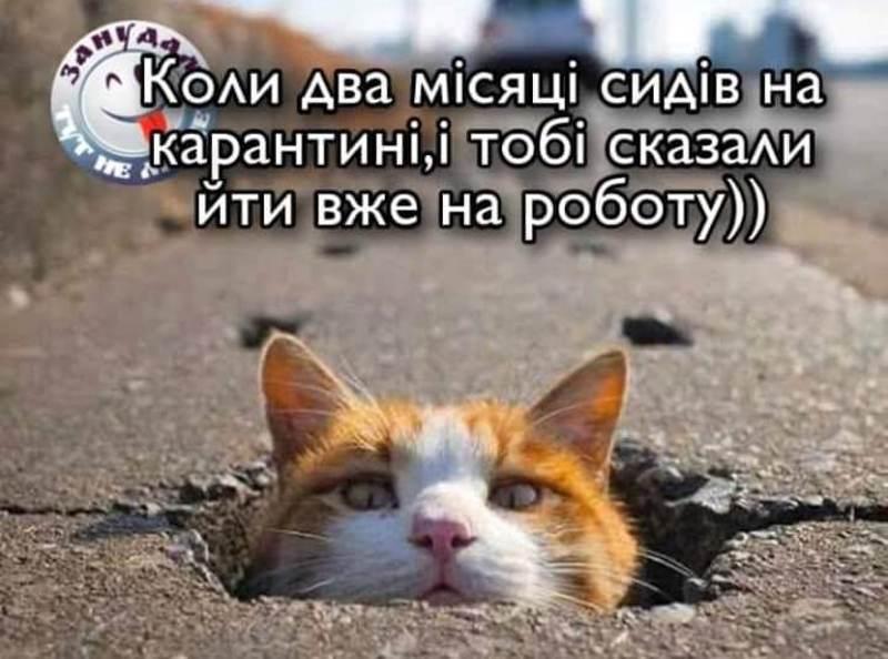 В Україні ввели нещодавно низку нових карантинних послаблень