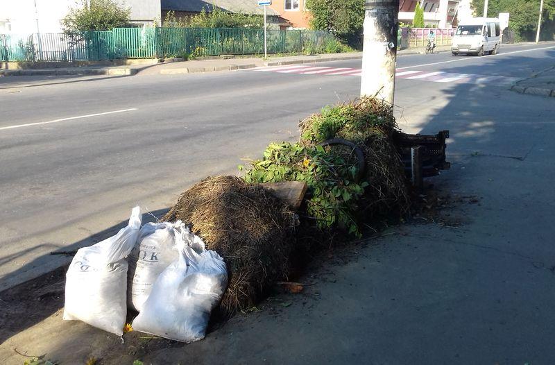Раз у місяць комунальники забирають такі відходи від приватних домоволодінь