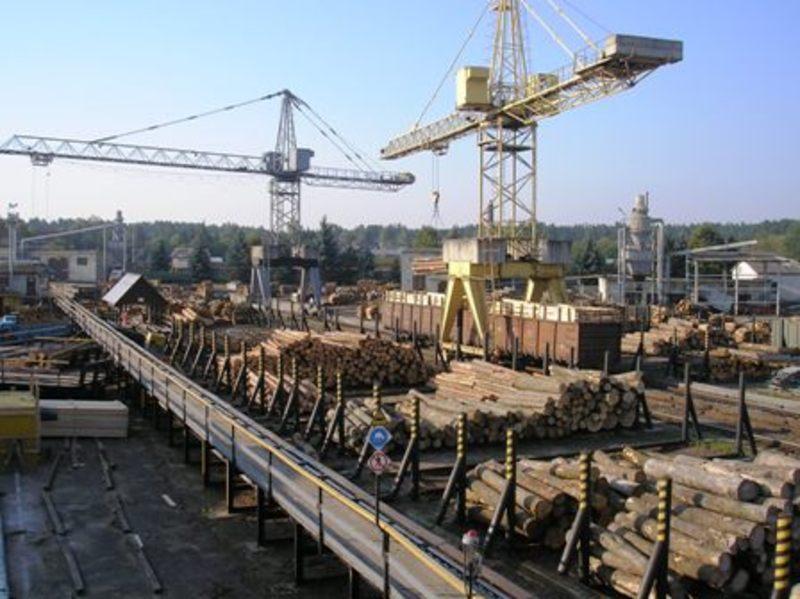 Вдалося реалізувати 31 тисячу метрів кубічних необробленої деревини