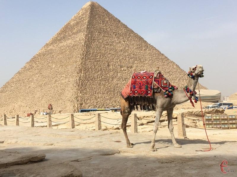 В Єгипті запустили віртуальні екскурсії