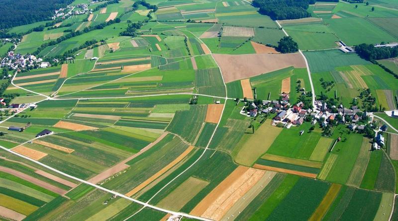 Ще 6 ОТГ у 2019 році отримають землі у комунальну власність