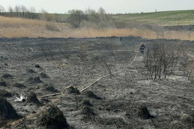 Впродовж 13 квітня на території області виникло 14 пожеж сухостою, під час яких вигоріло майже 15 гектарів території