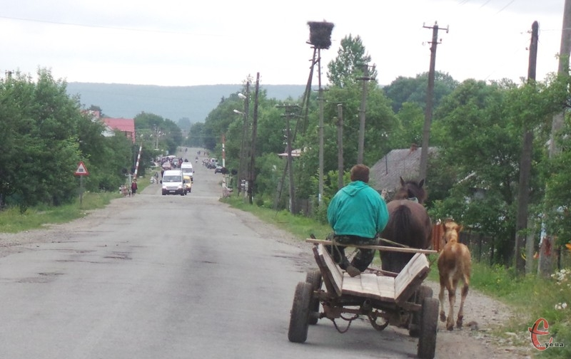 У Білогірському районі вкрали і коней, і воза.