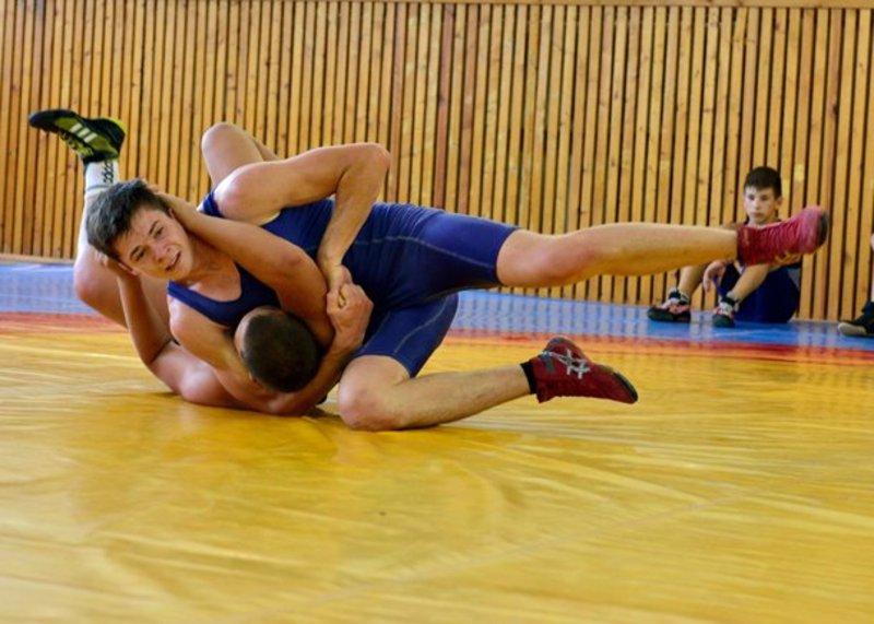 За нагороди чемпіонату України змагалися спортсмени з 17 областей країни