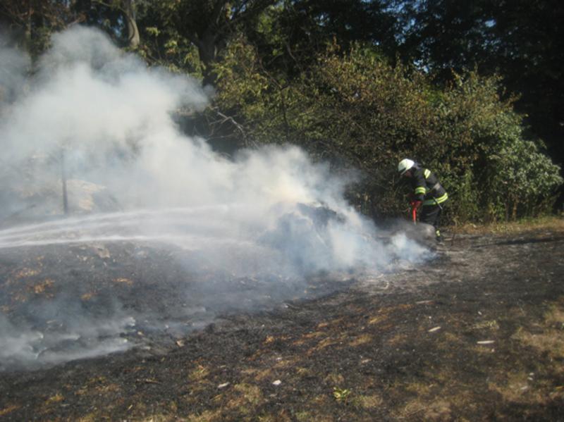 Рятувальники запобігти перекиданню полум'я на поруч розташовані житловий будинок та хлів
