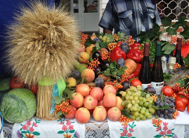 День міста у Хмельницькому розпочнеться святковим сільськогосподарським ярмарком