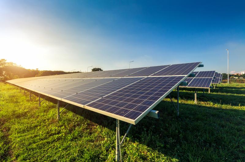 Сонячна станція буде розташована на 30 гектарах