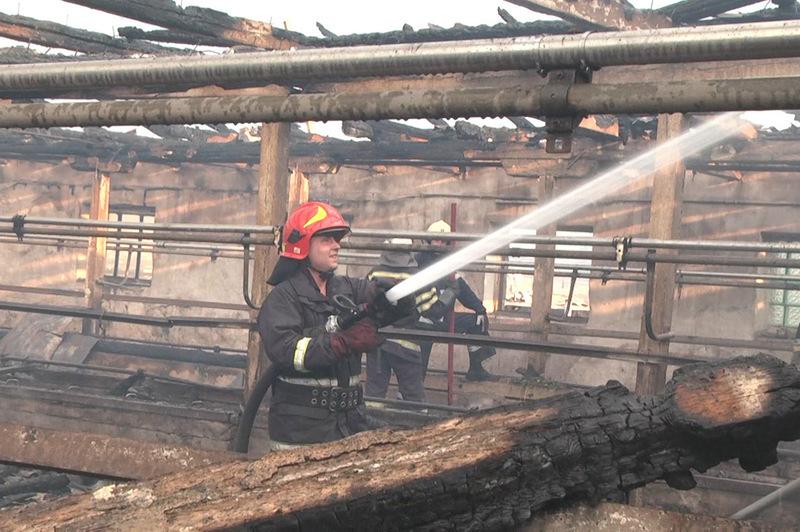 На момент прибуття першого підрозділу рятувальників площа пожежі сягнула 1500 квадратних метрів