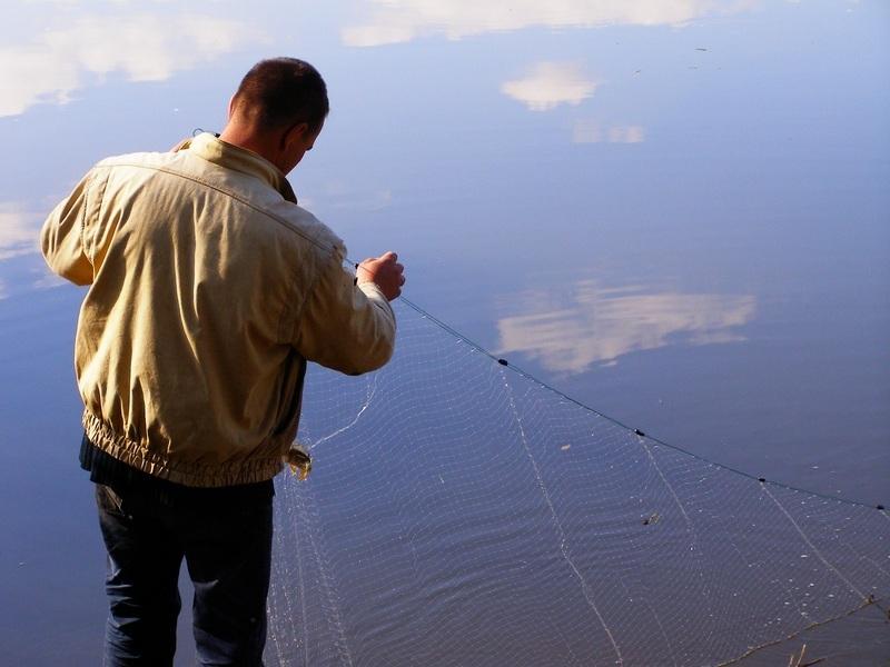 За незаконний вилов риби сітками і хваткою порушники нестимуть кримінальна відповідальність