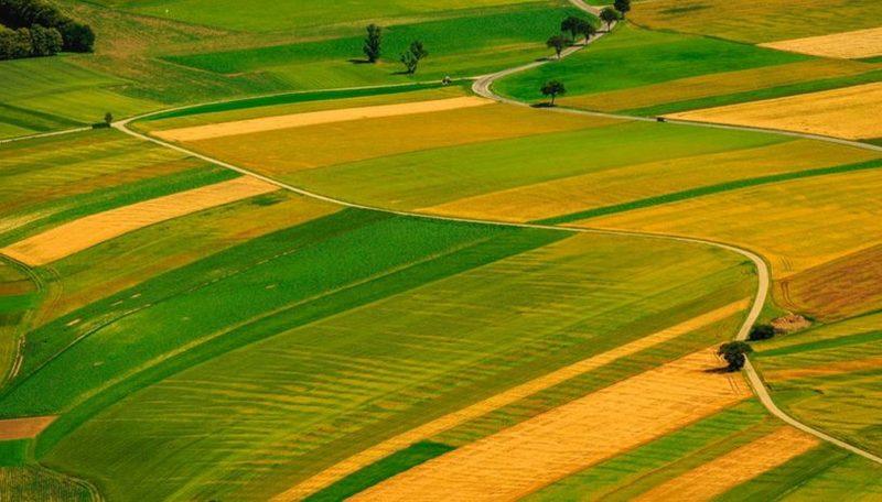 Вартість землі оцінюють у понад 4,8 мільйона гривень