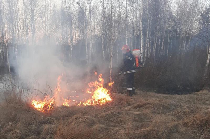Рятувальникам області доводилося вкотре гасити пожежі сухої рослинності