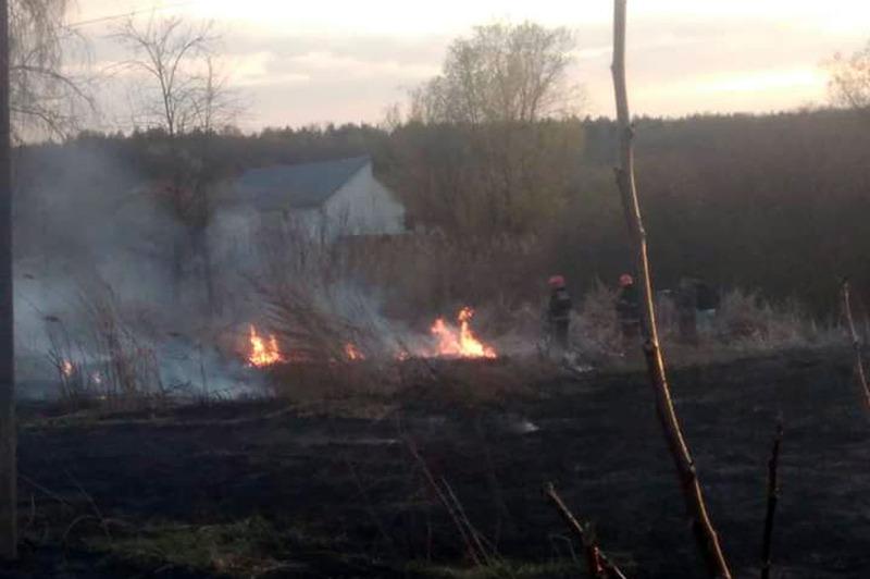 Пожежі в екосистемах тривають