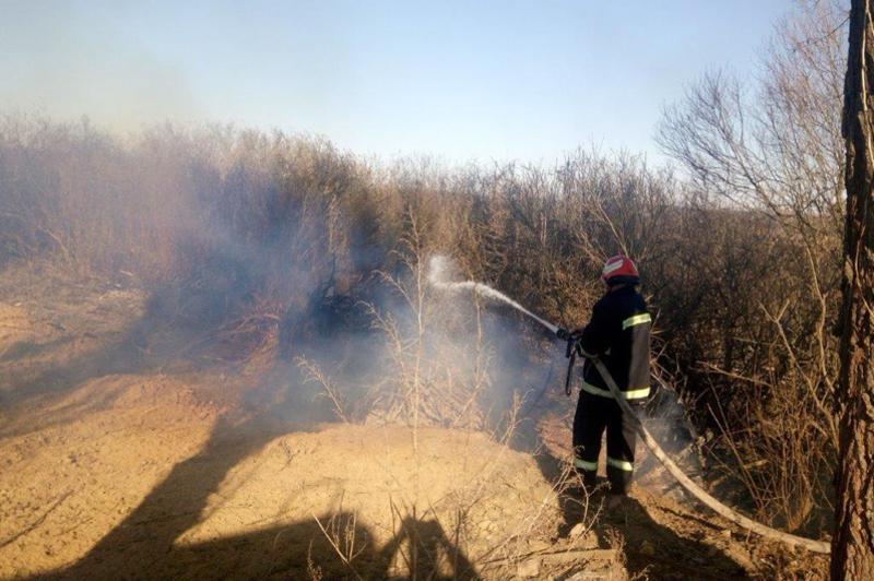 ДСНС закликає громадян не провокувати пожежі у природних екосистемах